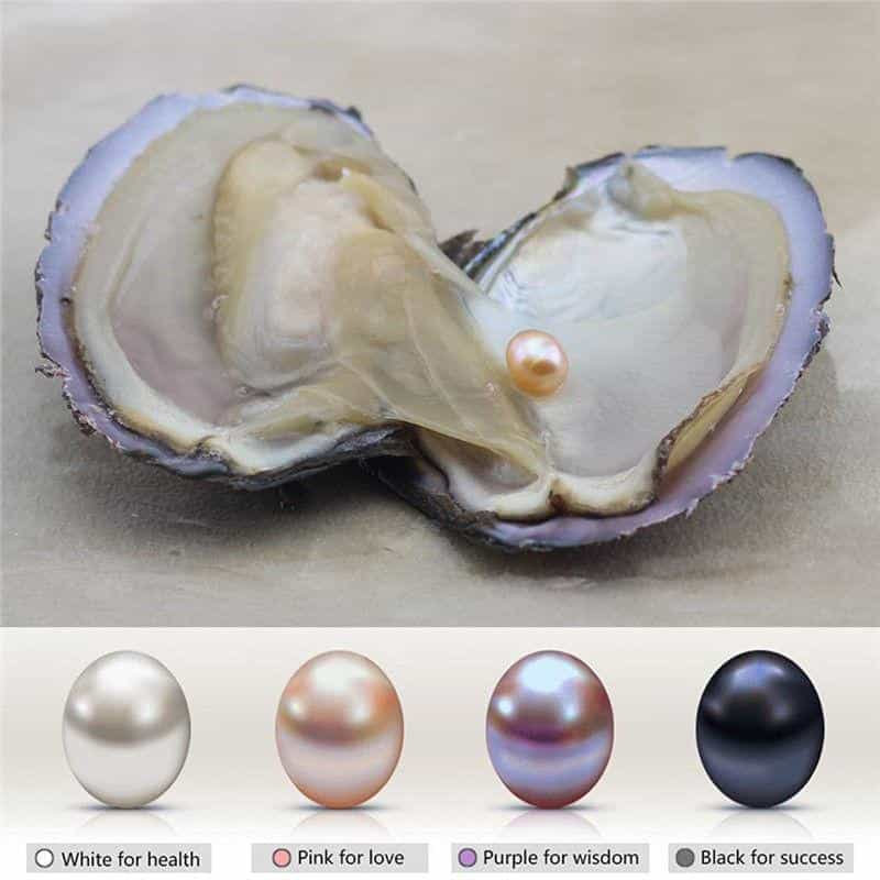 Natural Oyster Pearl Necklace Best Sellers Jewelry Type : Angel|Pink Rose|Red Rose|Shell|Coconut Tree|Dolphin|Love|Rose|Wish|Cherry|Sunflow|Pigeon